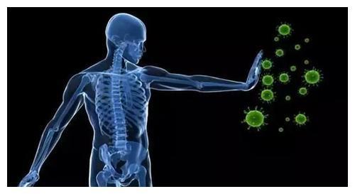 提高免疫力的误区和正确做法在这里,越早知道越好!