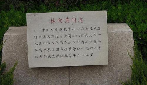 他是林帅的亲弟弟,性格和林截然相反,为保护师政治部主任牺牲