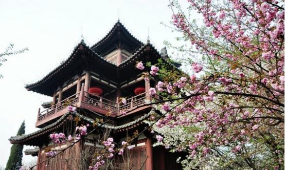 西安有处零差评景点,四月春色引人入目,赏花拍照不要错过