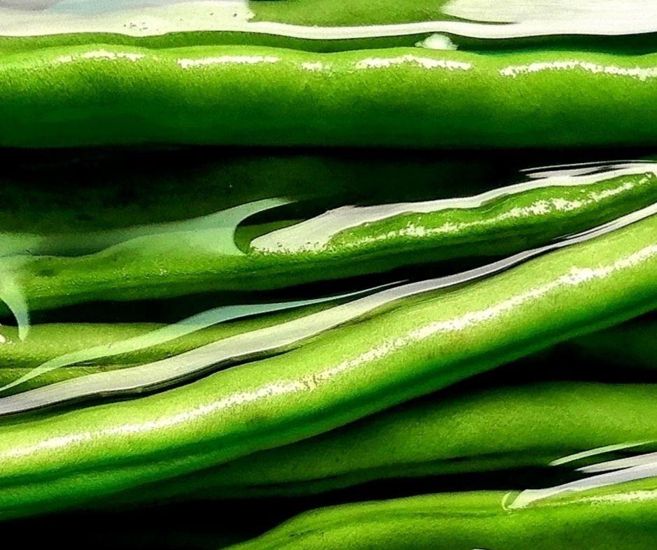 干煸四季豆这样做不仅清脆爽口无毒不夹生,而且营养美味简单易学