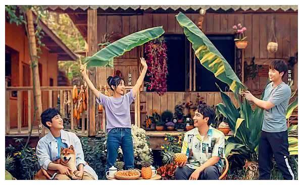 《向往的生活4》杨紫出场方式太特别!何炅都笑了,粉丝感到惊喜