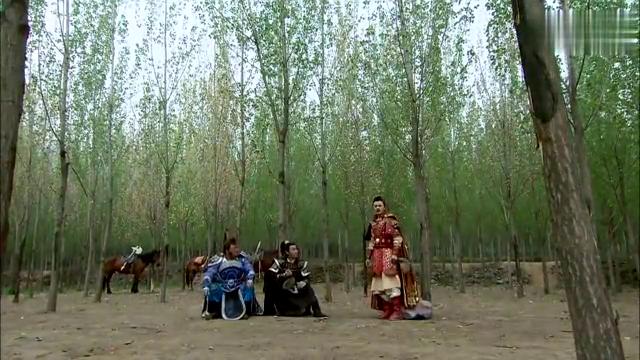 薛刚带兵去清凉山,并给手下下达命令,要一路打过去