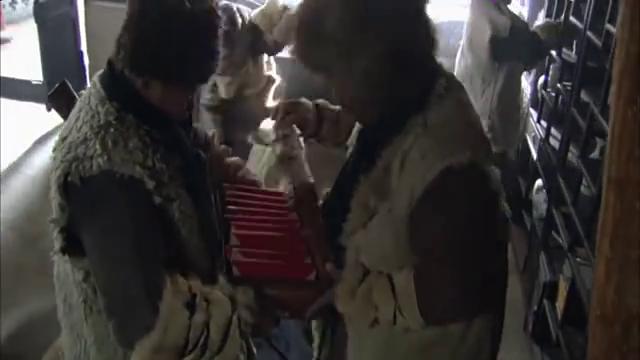 闯关东:二龙山在高家大户收获颇丰,朱开山请乞丐们吃饭