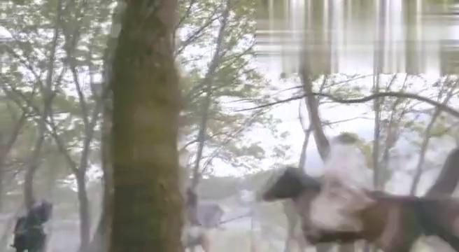 萧十一郎对战绝顶高手,使出长短双剑把对手打退!
