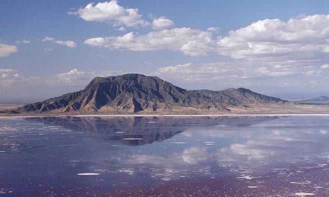 """有这样一条河,被称为""""冥河"""",吸引动物靠近,把它们变为活化石"""