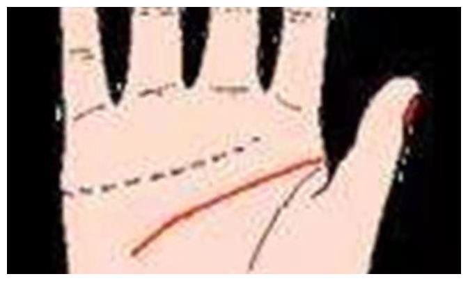 手里的三条纹路,你都懂么