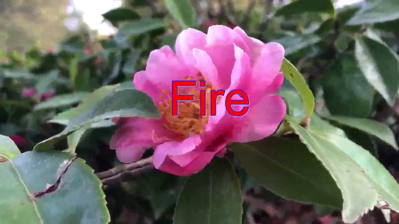 分享邓丽君的经典歌曲《Fire》,声音清透,唱功了不得