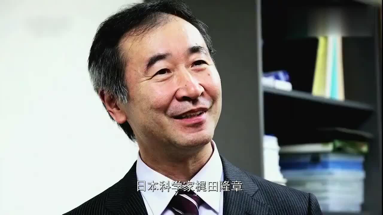 本世纪初,中国拥有第二大核反应堆,为寻找中微子提供巨大帮助!