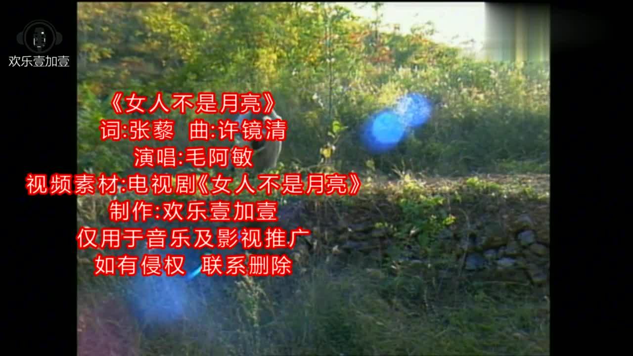 毛阿敏演唱经典老歌《女人不是月亮》,当年的赵明明太美了