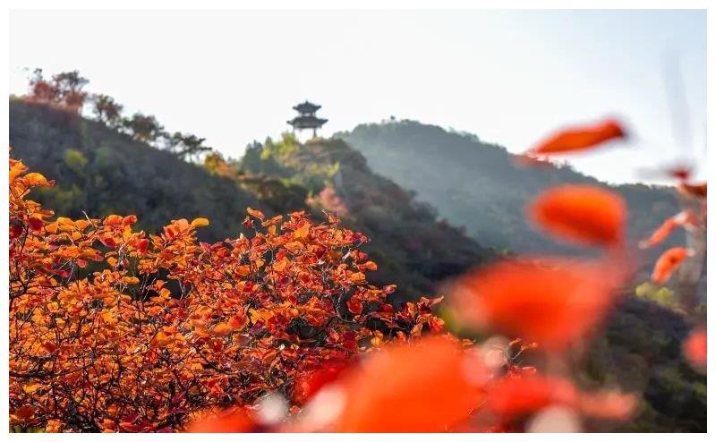 秋天,我最想住在昌平