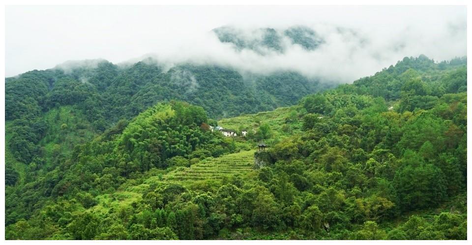 安徽省一个国家级自然保护区 不仅山岳风光秀美 而且人文景观众多