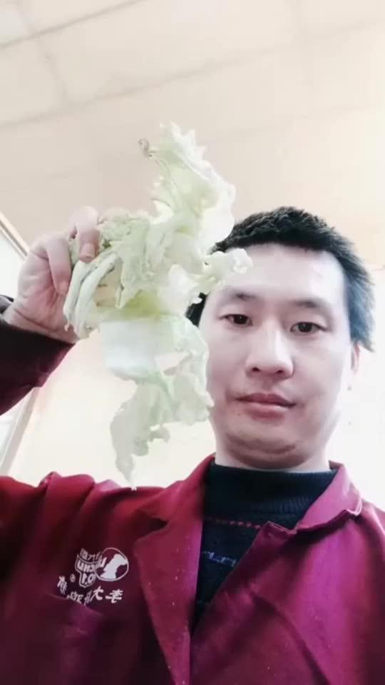 切白菜炒豆腐