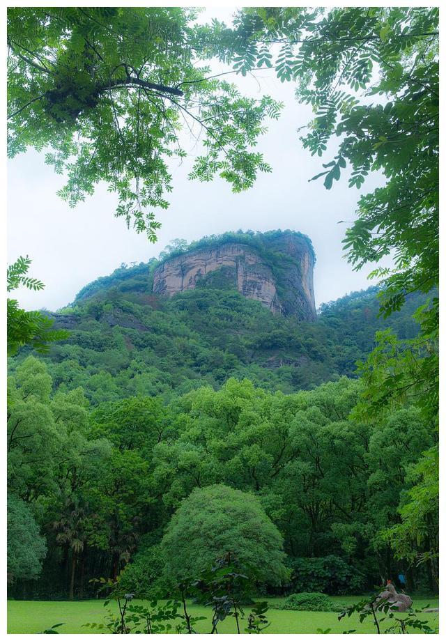 武夷山的地理位置和正岩、半岩、州茶的区别