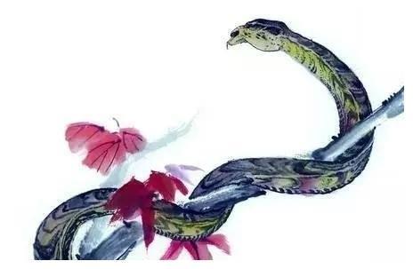揭秘属蛇人的婚姻与一生运势,家有生肖蛇速看