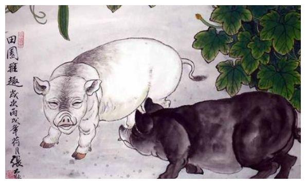 生肖猪:祸从天降各自飞,但这两个人会与你有福同享、有难同当!