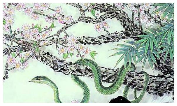 生肖蛇11月运势:11月初大喜临头,属蛇人看看什么喜?