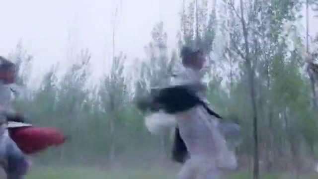 薛葵对战白文豹,万万没想到一名女将突然出现,被薛葵一棍打飞!