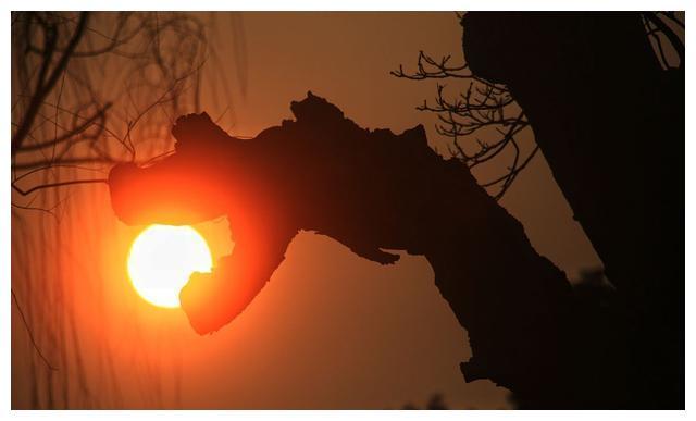现代诗 黝黑的皮肤,过多的侵染了太阳的颜色