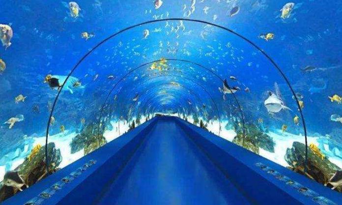 大海里到处都是海水,海底隧道是如何建成的?3D动画模拟全程!