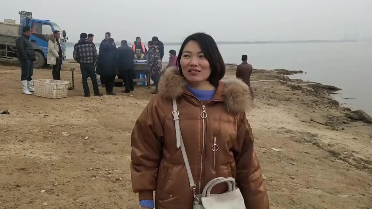 南阳鸭河野生鲢鱼出库啦,看看一船二万斤的鱼,是用啥机器运上岸