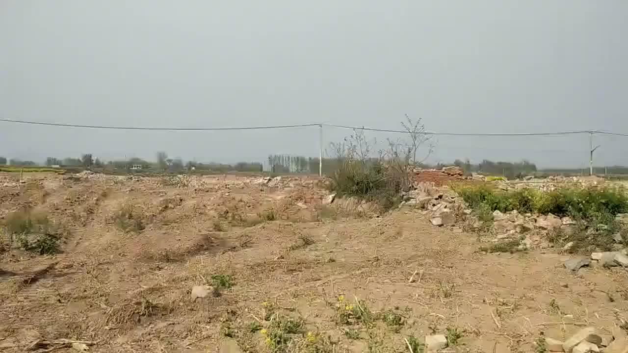 河南新乡:这个村整体拆迁,建设豆腐加工基地,带动农村经济发展