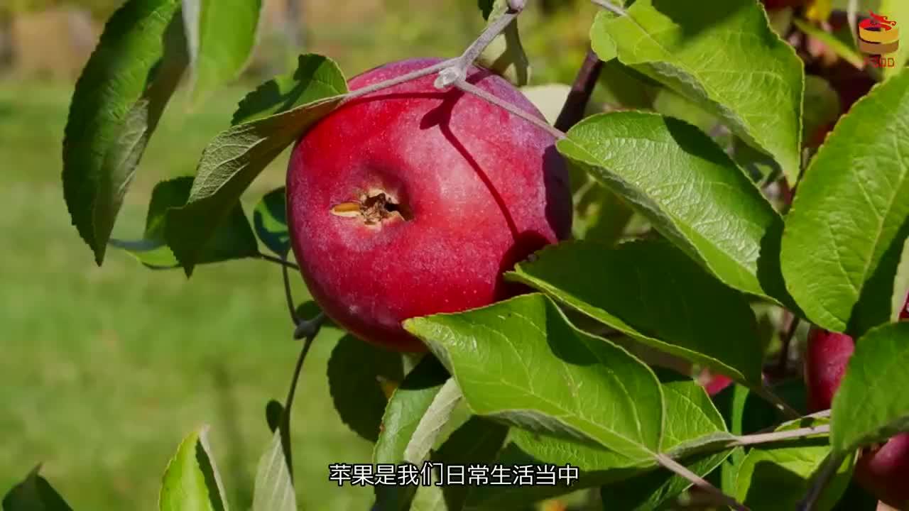 皱纹很难除?苹果加一物,经常吃一点,美容养颜,排出毒素