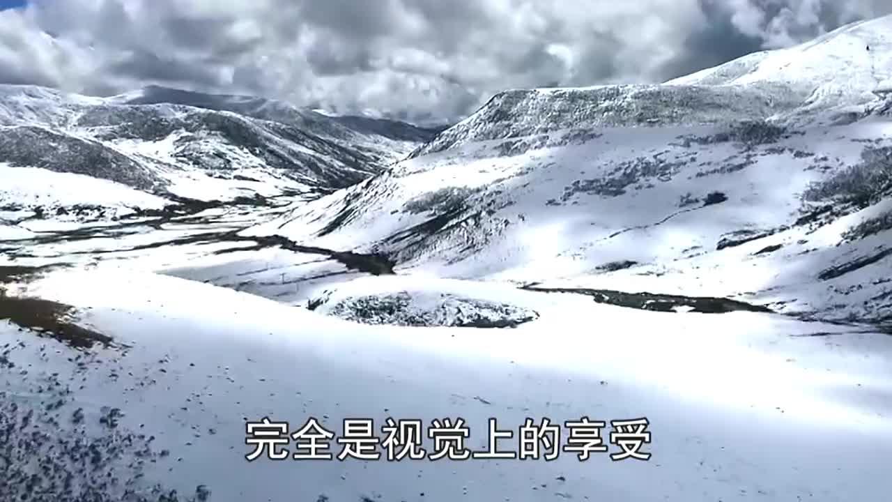 藏族动物保护员在死了的牦牛身边默默哭泣,感动无数网友