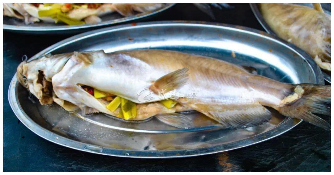 吃的境界!威远人 过来煮一条清蒸鱼叫苏东坡