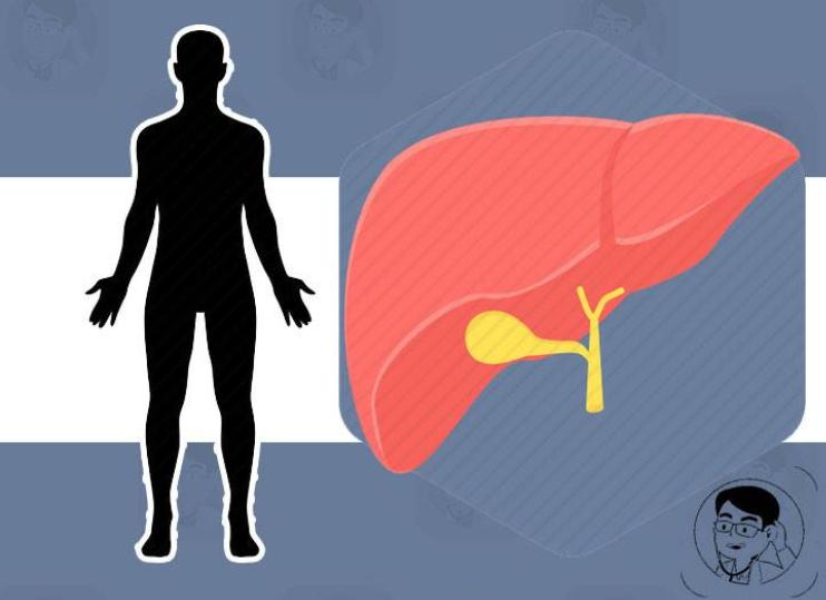 近期腹部突然出现2个迹象,需警惕,可能是肝癌来临的信号!