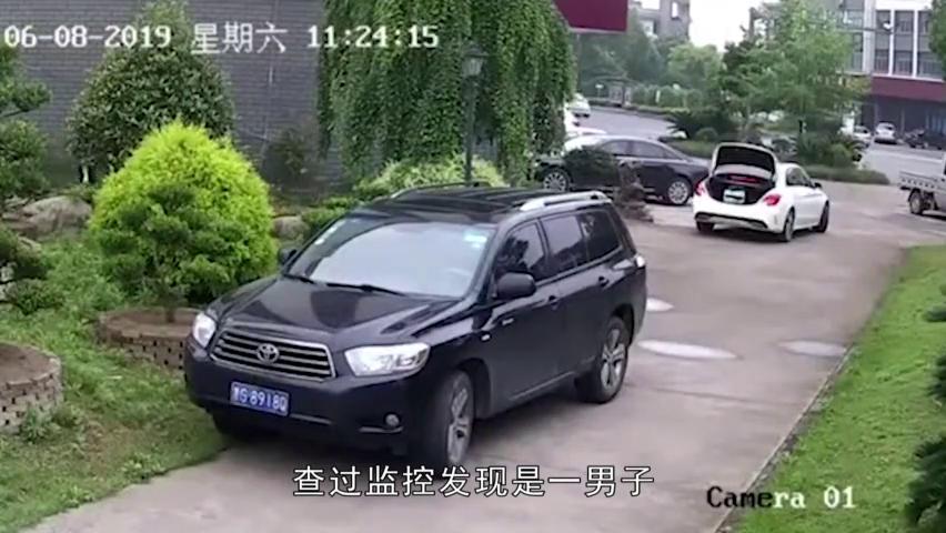 喂,警察局吗?有个开着奔驰的把我家绿植偷走了!