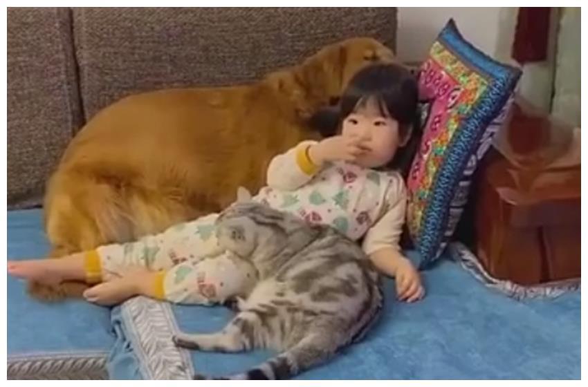 """萌娃小小年纪""""猫狗双全""""惹人羡慕,网友:是传说中的人生赢家啊"""