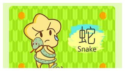 辛丑年生肖蛇的人桃花运好不好 方位在哪儿