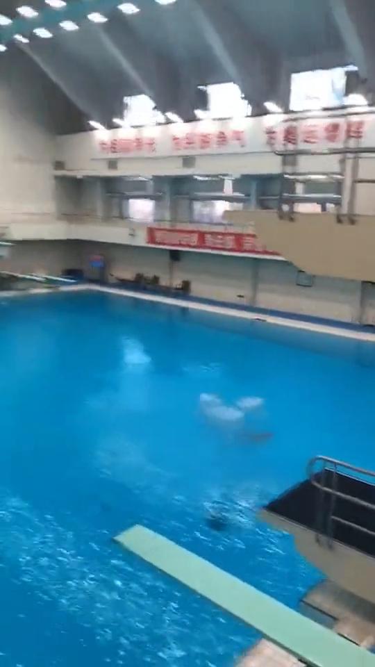 国家跳水队测验,感叹中国跳水运动员的强大下水的一刻毫无水花