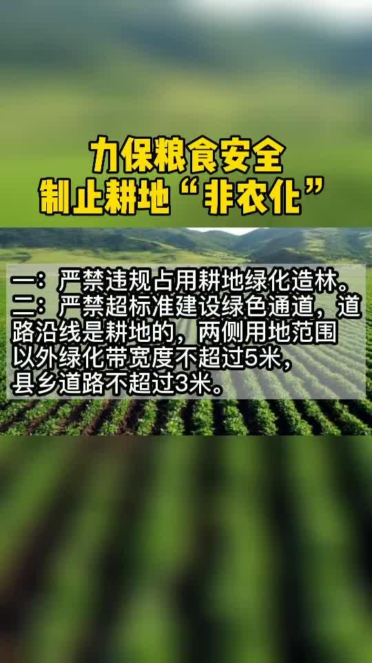 力保粮食安全,制止耕地非农化