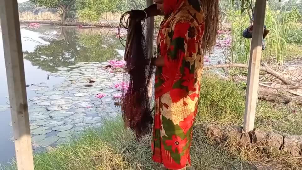 莲花池里有鱼,大婶一网下去,看看她捕获了多少鱼?