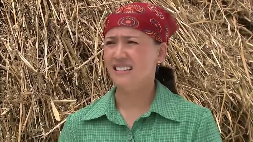 乡里彩虹:老农民种小麦输给大学生,殊不知他们输给的是高科技