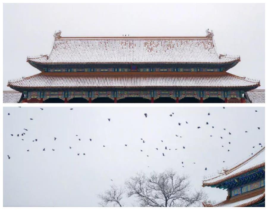 """2021北京初雪上热搜,线上的""""云赏雪""""你看了吗?"""