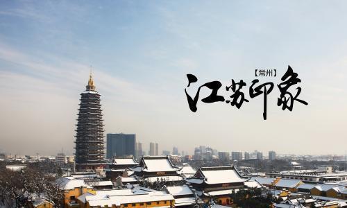 江苏省内发展不平衡,可采取对口支援模式,南京支援徐州