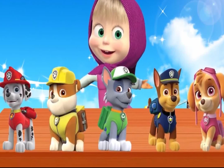 小红帽的汪汪队狗狗玩具,被灰熊抢走了,颜色双语早教