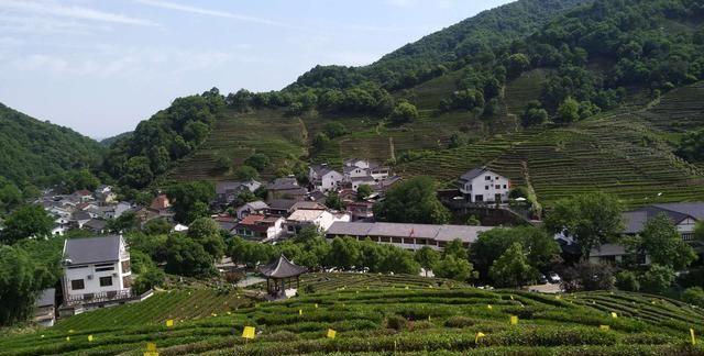 杭州,西湖风景区,龙井村,西湖龙井茶的故乡