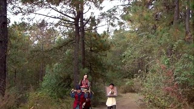 秋月陪陆三金去充军,却还要人抬着她走,这下把官差累的半死
