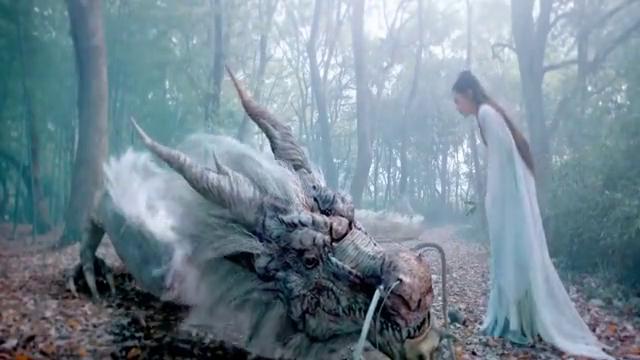 女子救下受伤的神龙,神龙为了报恩把心给了她,守护她一生一世