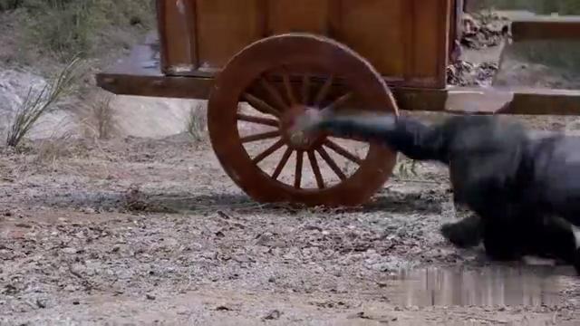 蠢贼睡着致使马车翻车,眼看就要坠落悬崖,关键却是时刻剑柄救命