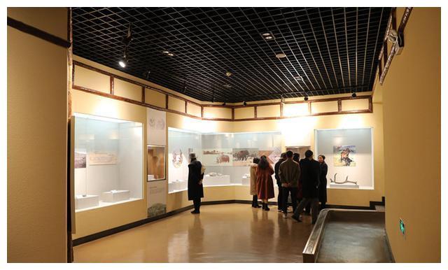 天水书画研究院书画家参观武山县博物馆(图文)