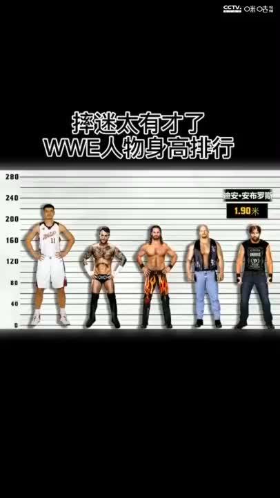 摔迷太有才了,WWE人物身高对比!