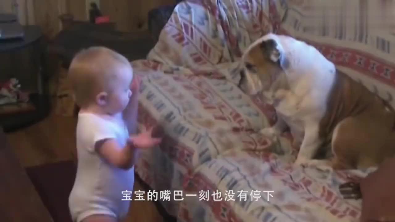 小女孩正在喂鸡,画面和谐,下一秒,家长后悔还来得及吗