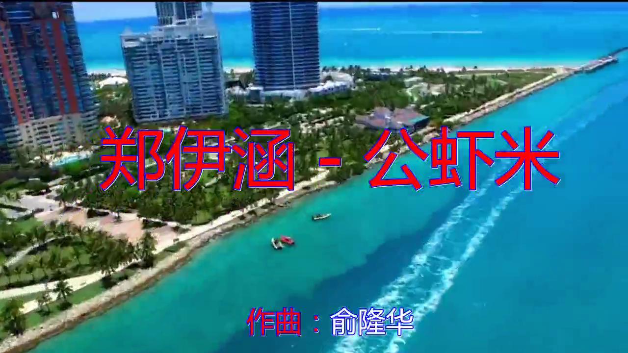 DJ何鹏的一首《郑伊涵 - 公虾米》,歌声振奋人心,实力不凡