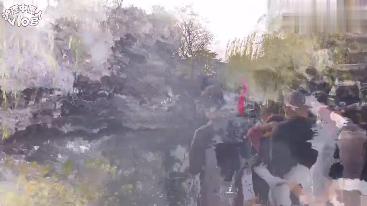 中国四大园林之一苏州拙政园,特色冠江南,你知道他的镇园之宝吗