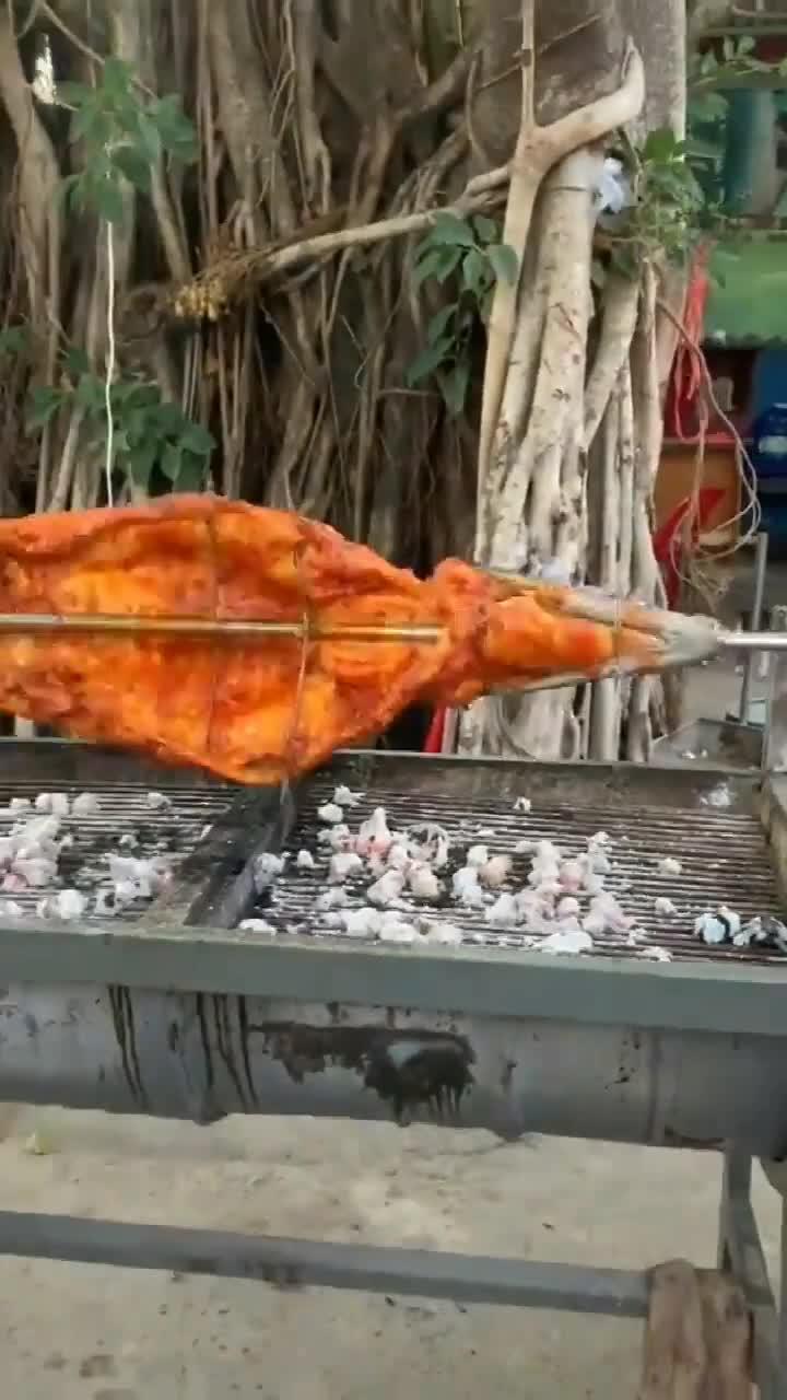 这样烤鱼你见过吗看这金黄色泽肚子里的蛔虫都控制不住了