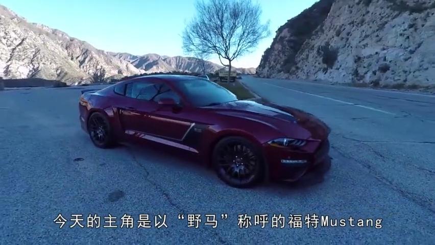 """迎合大众口味的""""小马驹"""",福特Mustang试驾评测"""